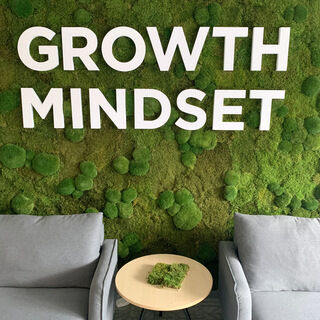 Seinalogo - Growth Mindset