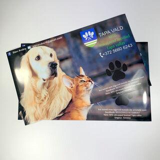 Reklaamkleebised - Abivajajad loomad Tapa vallas MTÜ