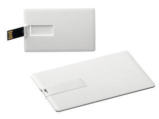 USB Flash 42